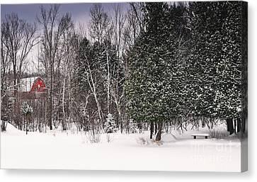 Winter Postcard Canvas Print by Gwen Gibson