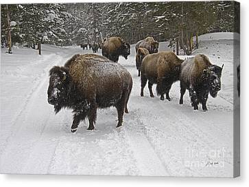 Winter Procession-signed Canvas Print