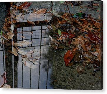Winter Puddle Canvas Print