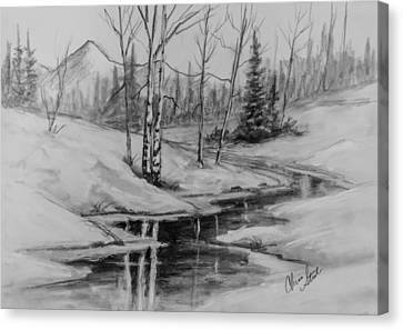 Winter Reflection Canvas Print by C Steele
