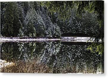 Canvas Print featuring the pyrography Winter Reflection by Timothy Latta