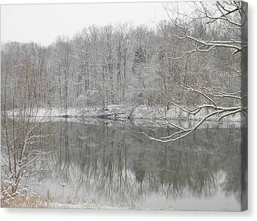 Winter Reflections 2 Canvas Print by Mark Minier