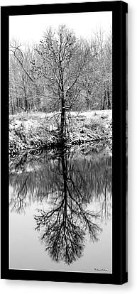 Winter Reflections 3 Canvas Print by David Lester