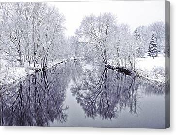 Winter Reflections Canvas Print by Andrew Soundarajan