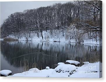Canvas Print featuring the photograph Winter Reflections by Dora Sofia Caputo Photographic Art and Design