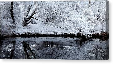 Winter Reflections Canvas Print by Steven Milner