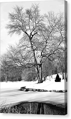 Winter Reflects In Black And White Canvas Print by Karol Livote