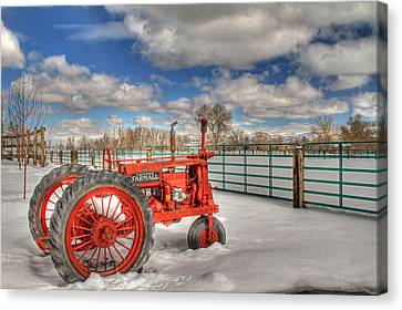 Winter Repose Canvas Print by Donna Kennedy
