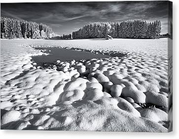 Winter Retreat Canvas Print by Dominique Dubied