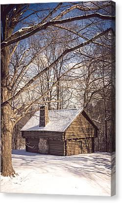 Winter Retreat Canvas Print by Sara Frank