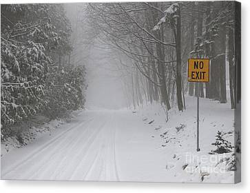 Winter Roads Canvas Print - Winter Road During Snow Storm by Elena Elisseeva
