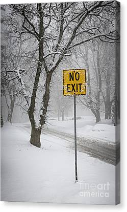 Winter Roads Canvas Print - Winter Road During Snowfall IIi by Elena Elisseeva