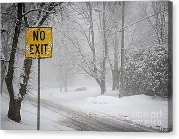 Winter Roads Canvas Print - Winter Road During Snowfall Iv by Elena Elisseeva
