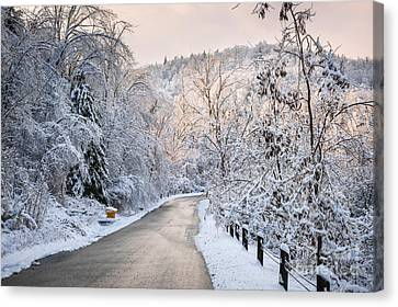 Winter Road In Snowy Forest Canvas Print by Elena Elisseeva