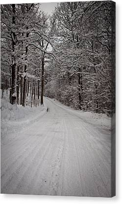 Winter Road Canvas Print by Robert Hellstrom