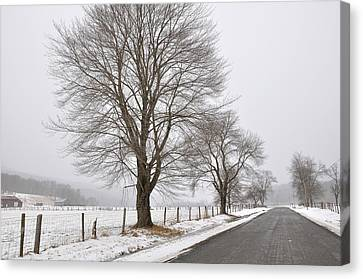 Winter Road Canvas Print by Todd Hostetter