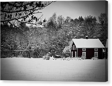 Winter Canvas Print by Robert Hellstrom
