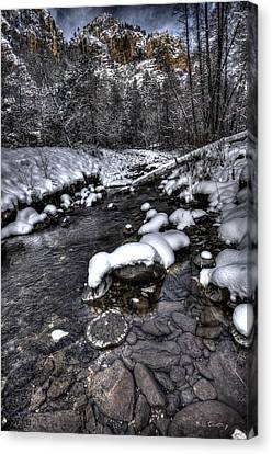 Winter Scene Canvas Print by Bill Cantey