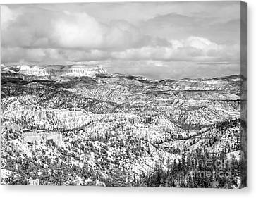 Canvas Print - Winter Scenery In Bryce Canyon Utah by Julia Hiebaum