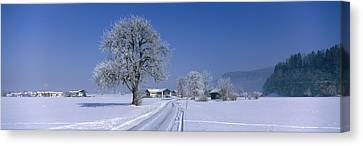 Winter Scenic, Austria Canvas Print by Panoramic Images