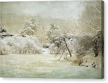 Winter Silence Canvas Print by Julie Palencia