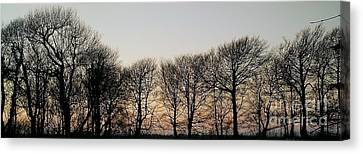 Winter Skyline Canvas Print by Richard Brookes
