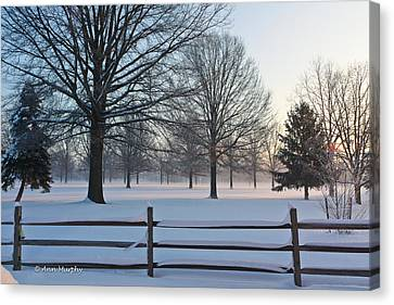 Winter Snow And Shadows Canvas Print by Ann Murphy