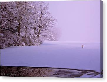 Canvas Print featuring the photograph Winter Solstice by Brenda Jacobs
