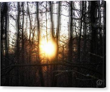 Winter Solstice Canvas Print by Gun Legler