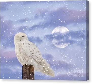 Winter Solstice Canvas Print by Heather King