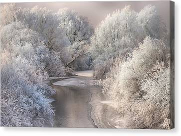 Winter Song Canvas Print by Sebestyen Bela
