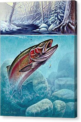 Winter Steelhead Canvas Print by Jon Q Wright