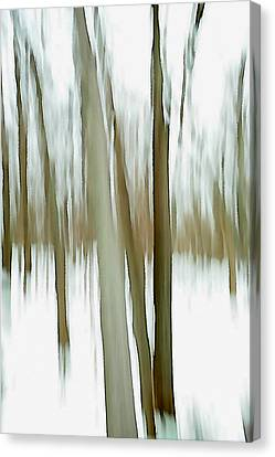 Canvas Print featuring the photograph Winter by Steven Huszar