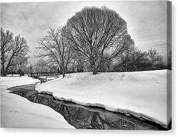 Winter Stream Canvas Print