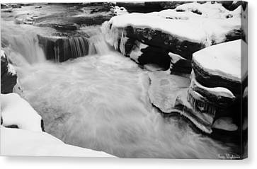 Winter Stream Canvas Print by Gary Wightman