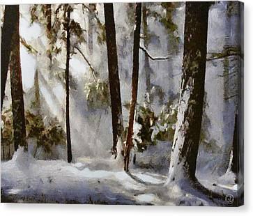 Winter Sun Canvas Print by Gun Legler