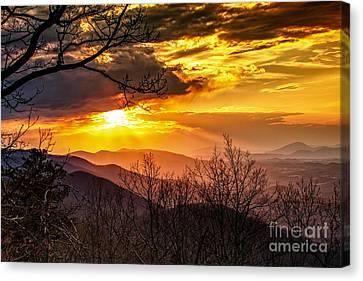 Winter Sun Canvas Print by Mark East