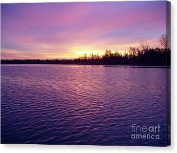 Winter Sunrise Canvas Print by John Telfer