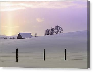 Winter Sunrise Canvas Print by Teri Virbickis