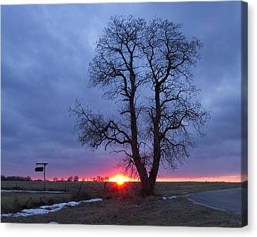 Winter Sunset Canvas Print by Eric Mace