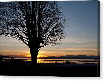 Canvas Print featuring the photograph Winter Sunset by Erin Kohlenberg