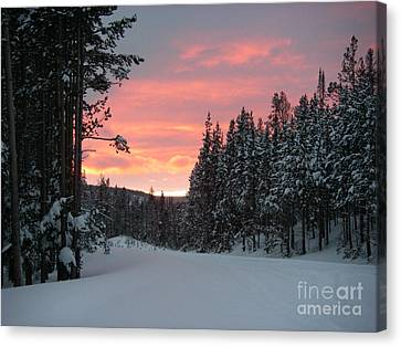 Winter Sunset Canvas Print by Jeanette French