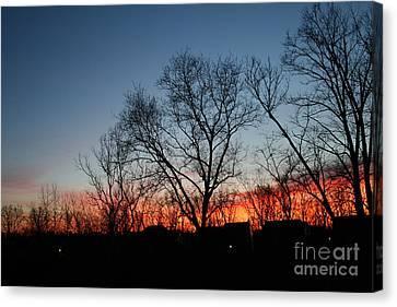 Winter Sunset Canvas Print by Karen Adams