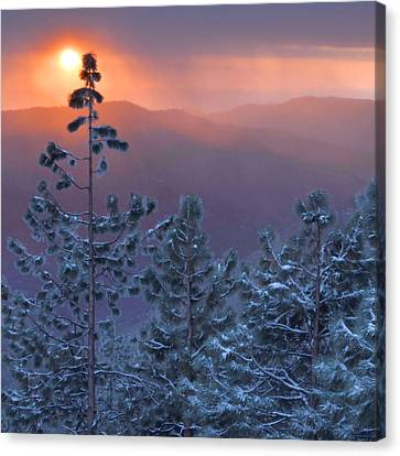 Winter Sunset - Kings Canyon Canvas Print by Stephen  Vecchiotti