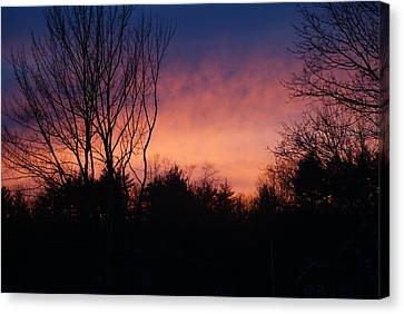 Winter Sunset Canvas Print by Lois Lepisto