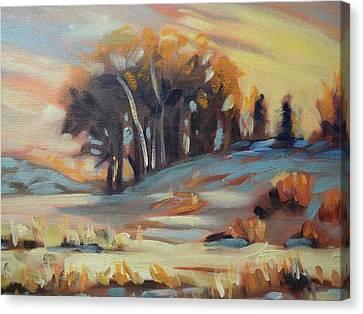 Winter Sunset Canvas Print by Robert Martin