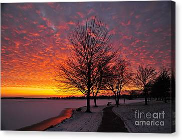 Canvas Print featuring the photograph Winter Sunset by Terri Gostola