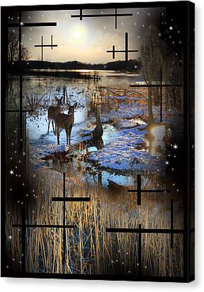 Winter Swamp Evening Canvas Print by Andrew Sliwinski