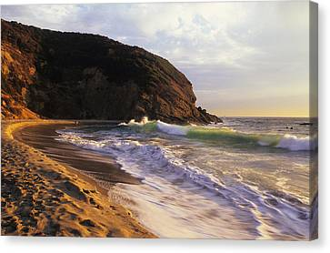 Winter Swells Strands Beach Canvas Print