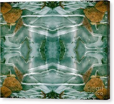Winter Symmetry Canvas Print